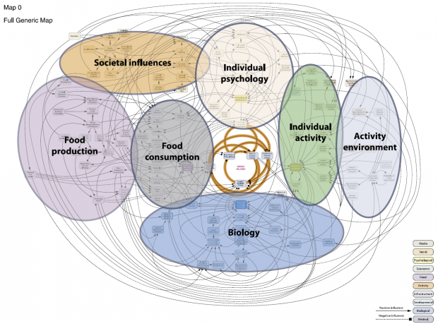 Graphical representation of the system of factors identified by Foresight that contribute to the prevalence of obesity.